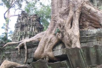 cambodia26