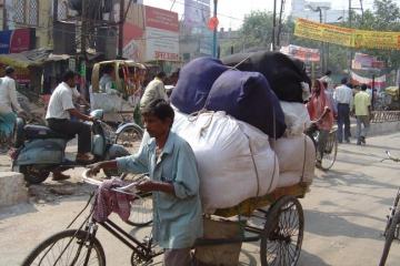 FOTOIndia40