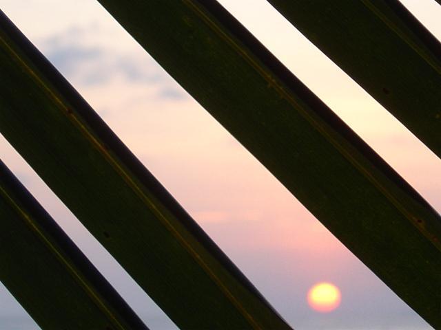 FOTOMAL017