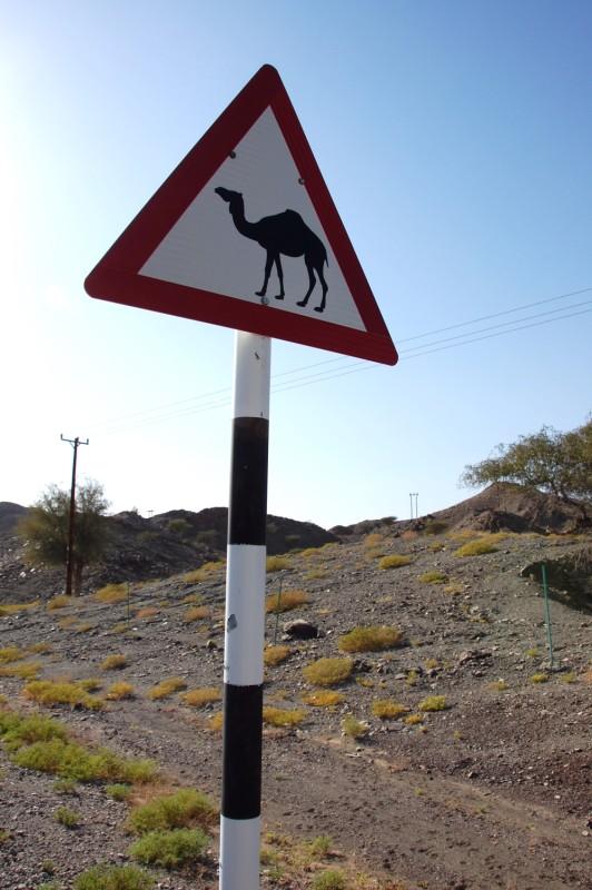 Oman015