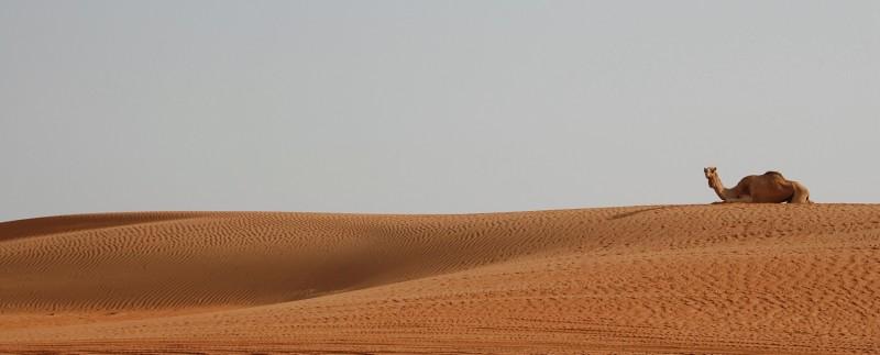 Oman020