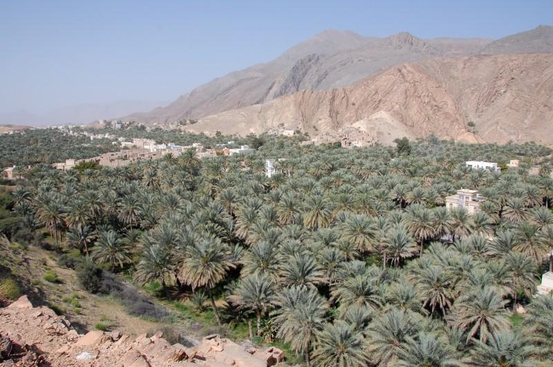 Oman022