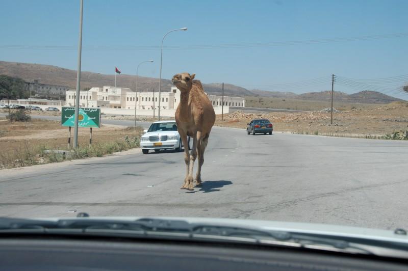 Oman155