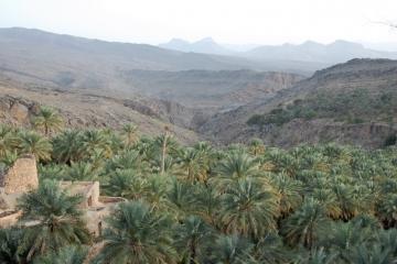 Oman032