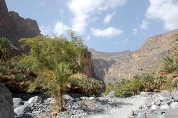 Oman043
