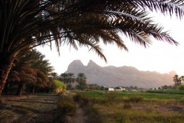 Oman034