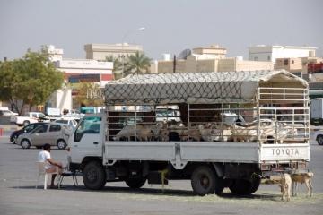 Oman040