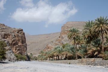 Oman041