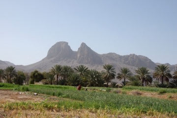 Oman055