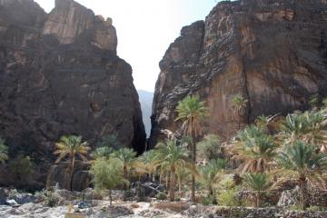Oman060