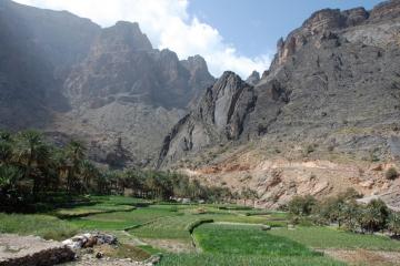 Oman067