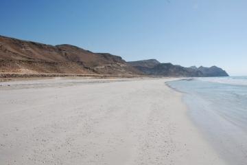 Oman145