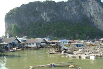 Thai011