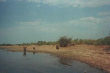 ZIMBAFOTO01