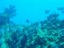 Cayman Brac 2004