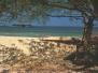 Malawi 2003