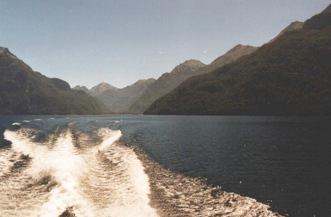 NZFOTO03