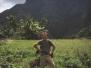 Palawan 2003