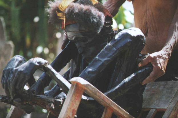 WPAPUAFOTO11